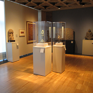 Y Cases and pedestals, Yale University Art Gallery