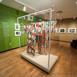 Mannequin Case for Kimonos – Mead Art Museum, Amherst College