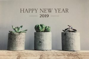 Best Wishes for 2019!